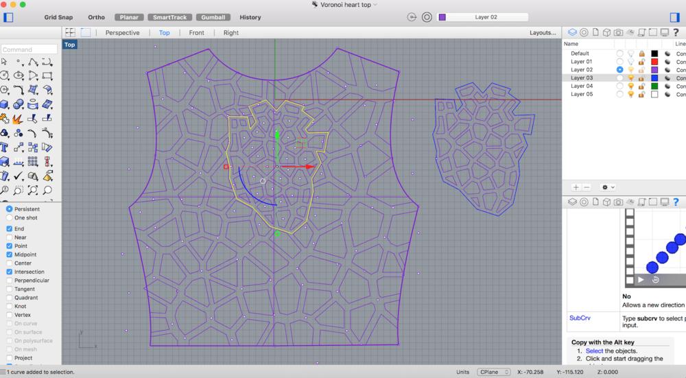 S3:W2_Voronoi top rhino.png