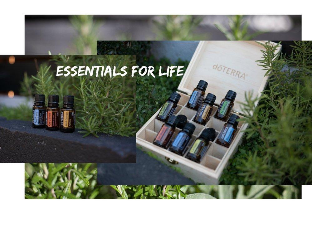 essentialsforlife.jpg
