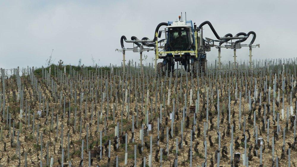 "Besprutning av vinrankor, Chablis, Frankrike, ur ""Sista Skörden"""