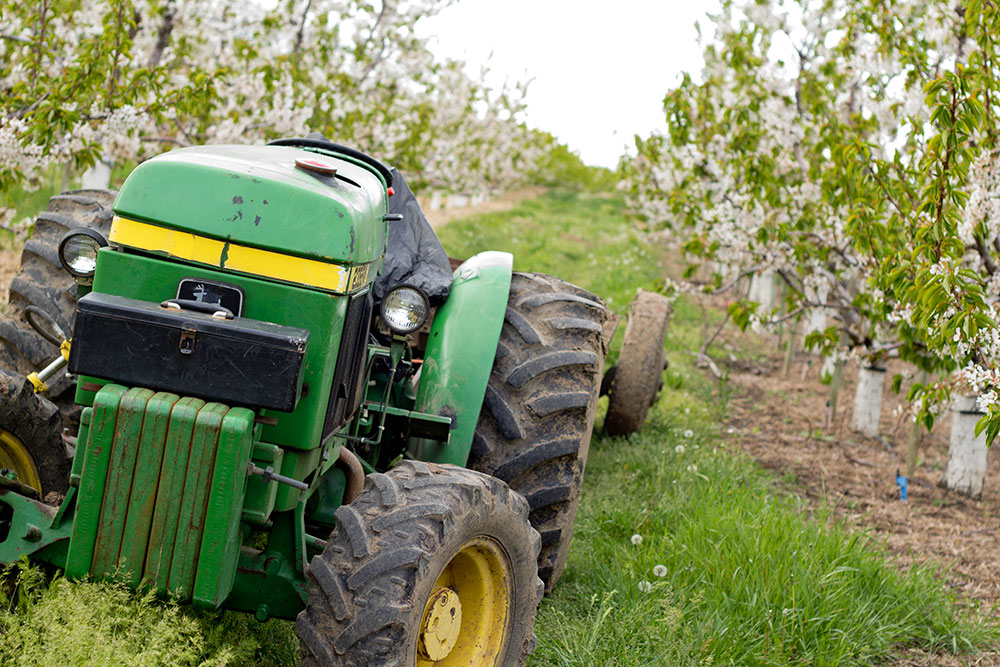 Orchards-Row-Tractor-1.jpg
