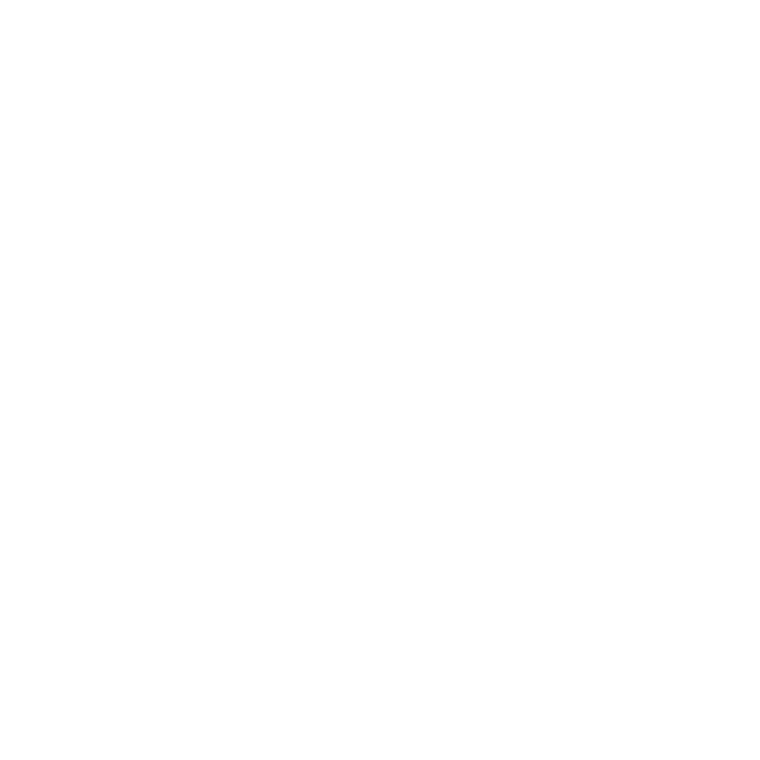 Maximilian Wiedemann - International Artist