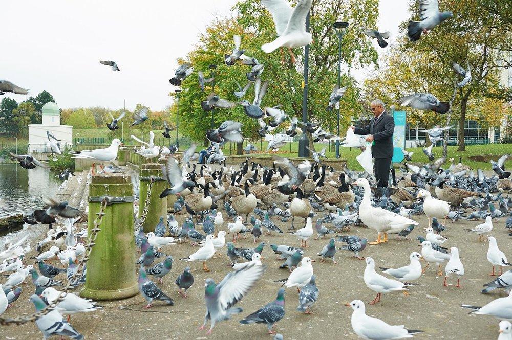 River Gardens, Derby