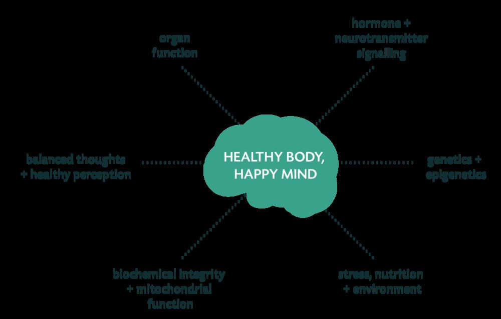holistic diagram-01.png