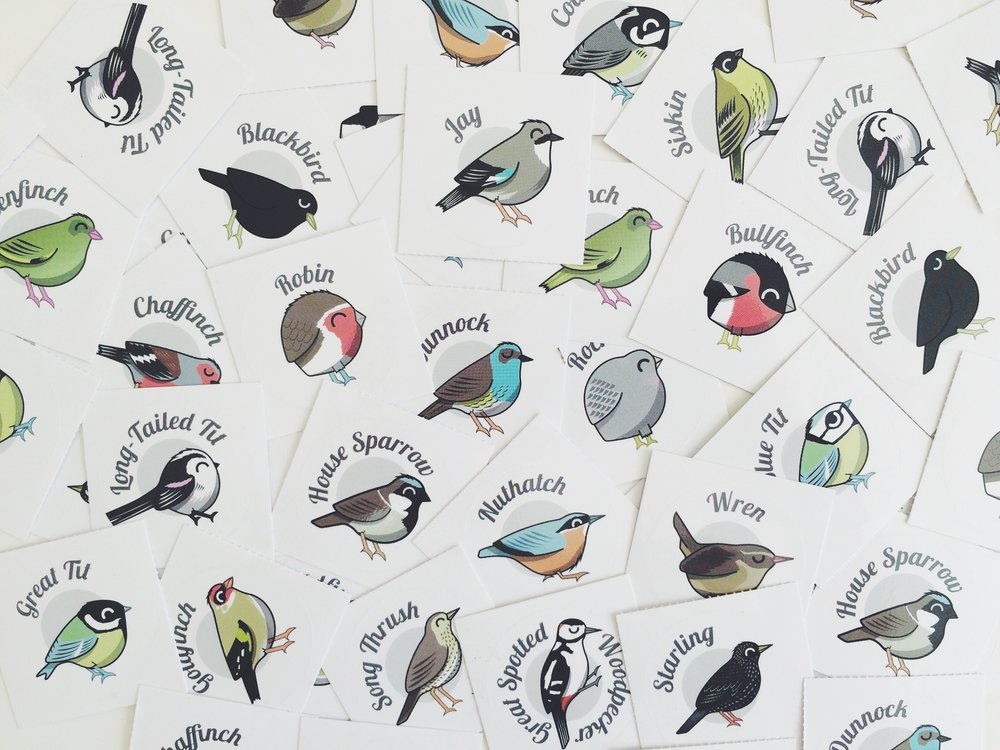 Studio Wood - Peck Illustrations 01