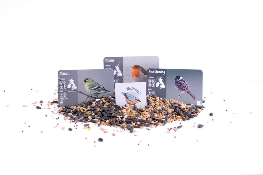 cards_seeds.jpg