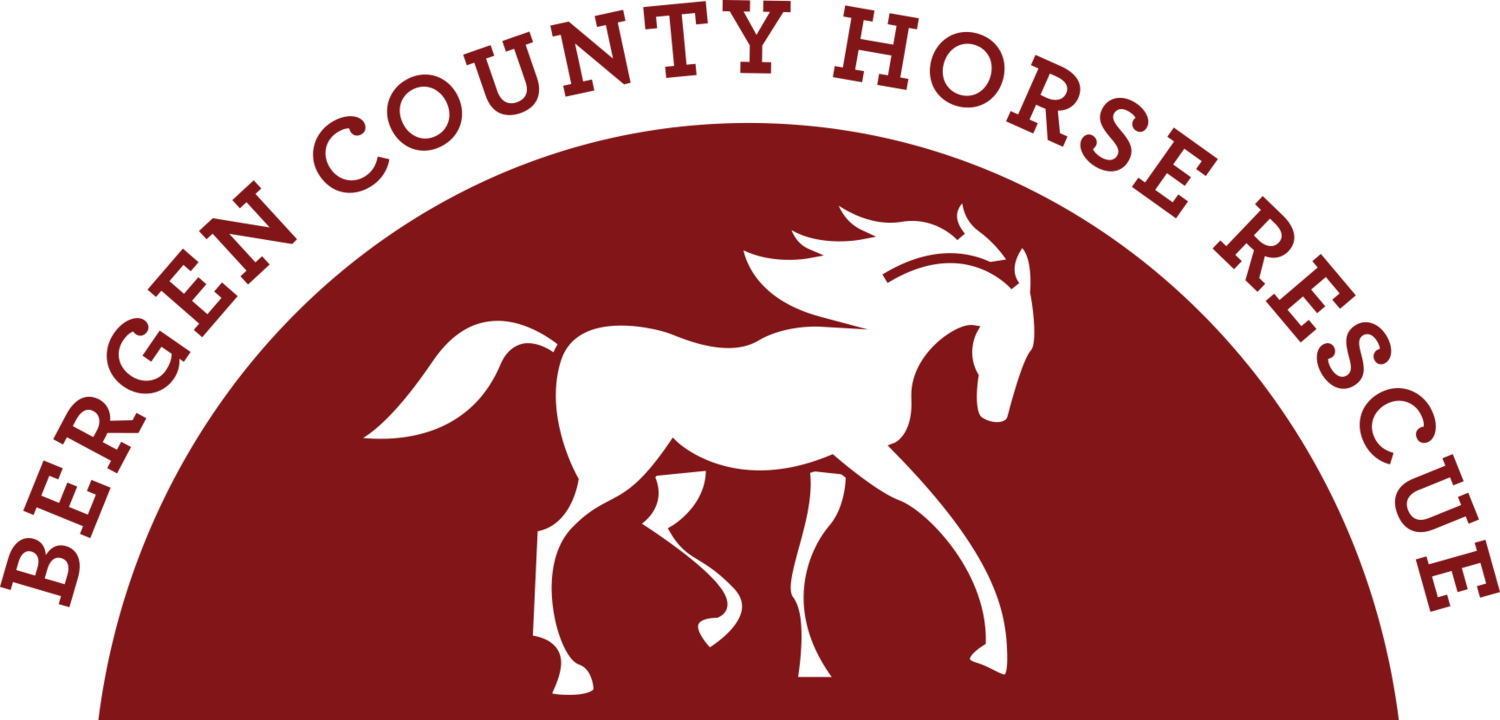 Bergen County Horse Rescue