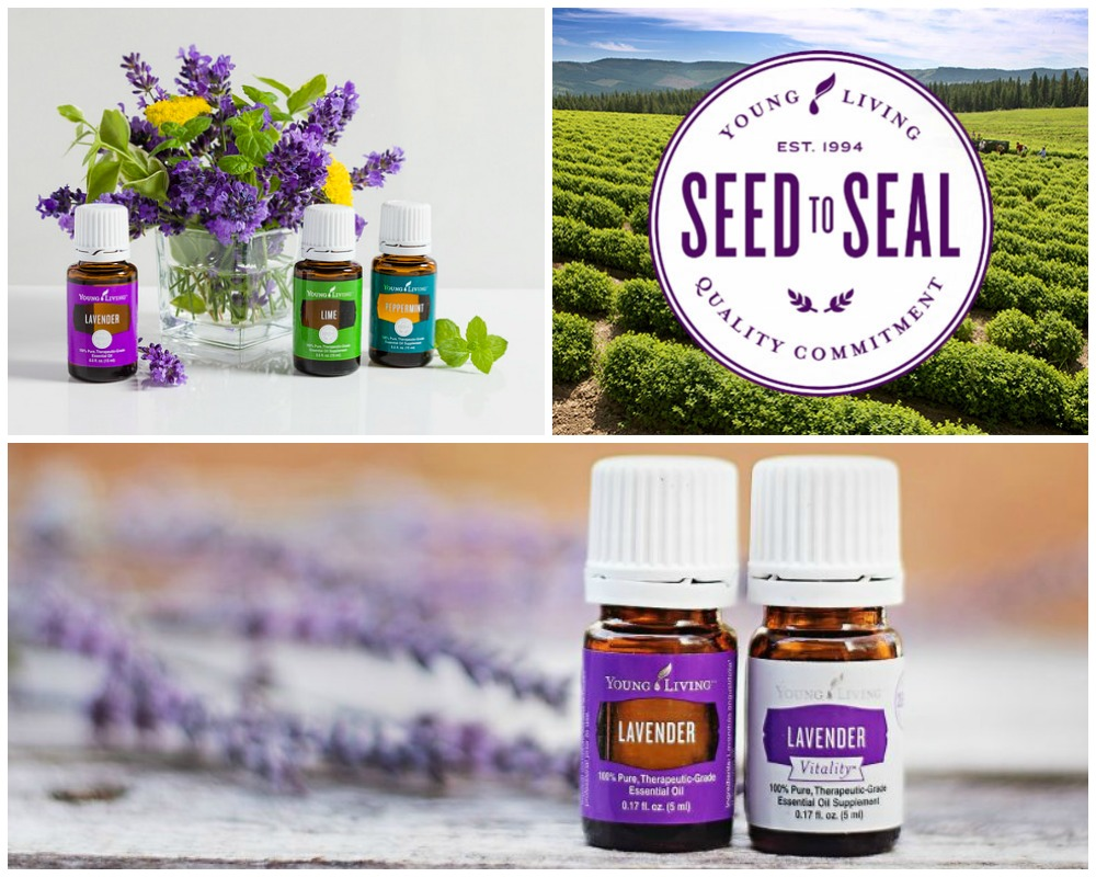 Young Living Des Moines IA Katy Polich.jpg