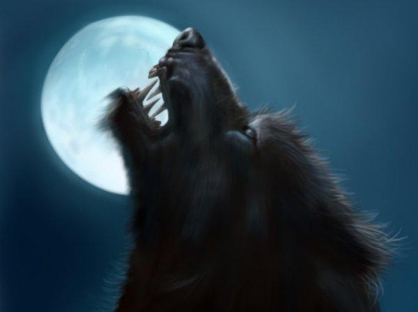 Loup garou.jpg
