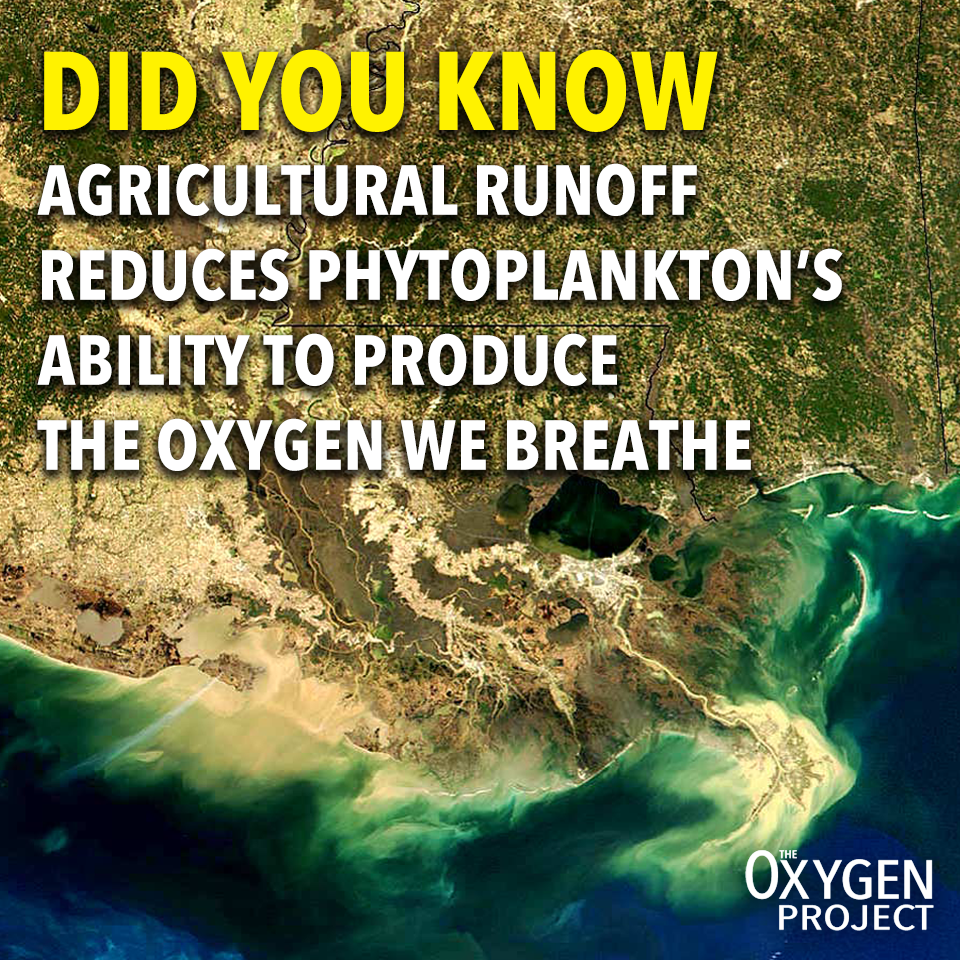 Agriculture_Runoff_Meme.png