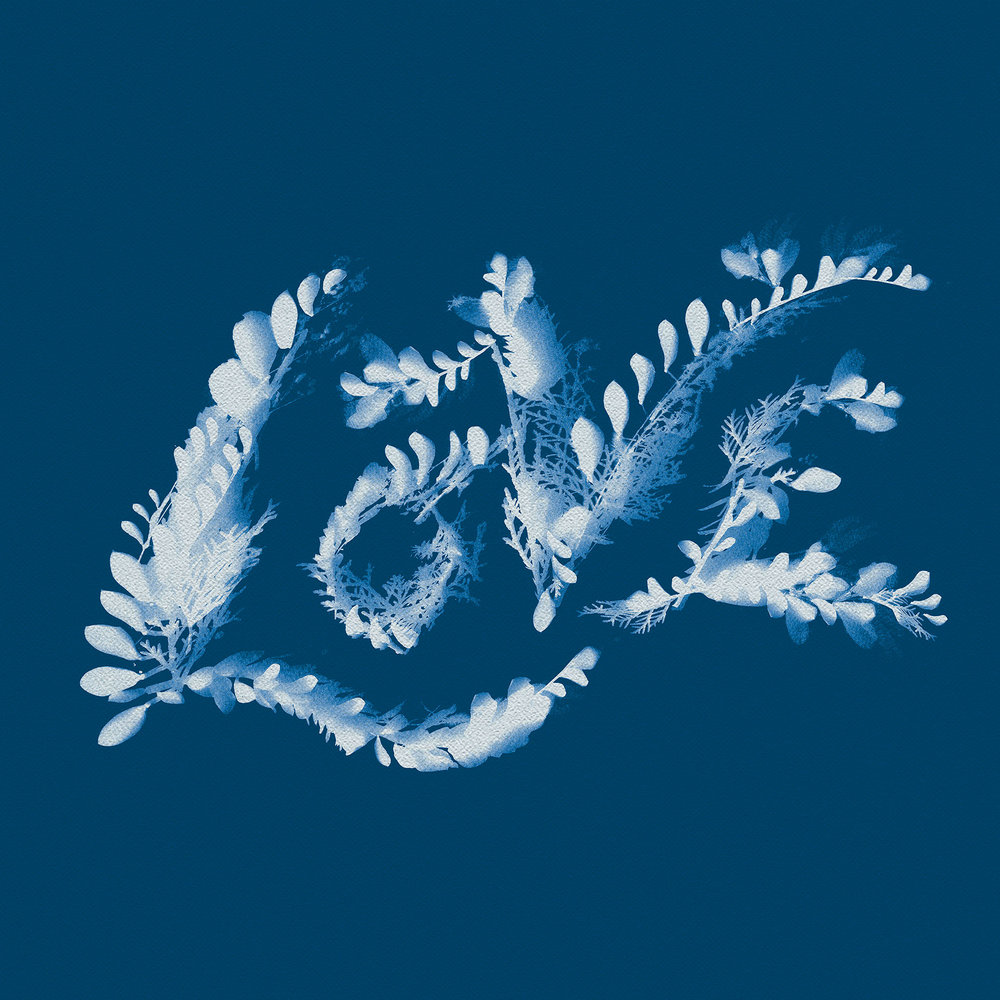 JillDeHaan_Cyanotype_LOVE.jpg