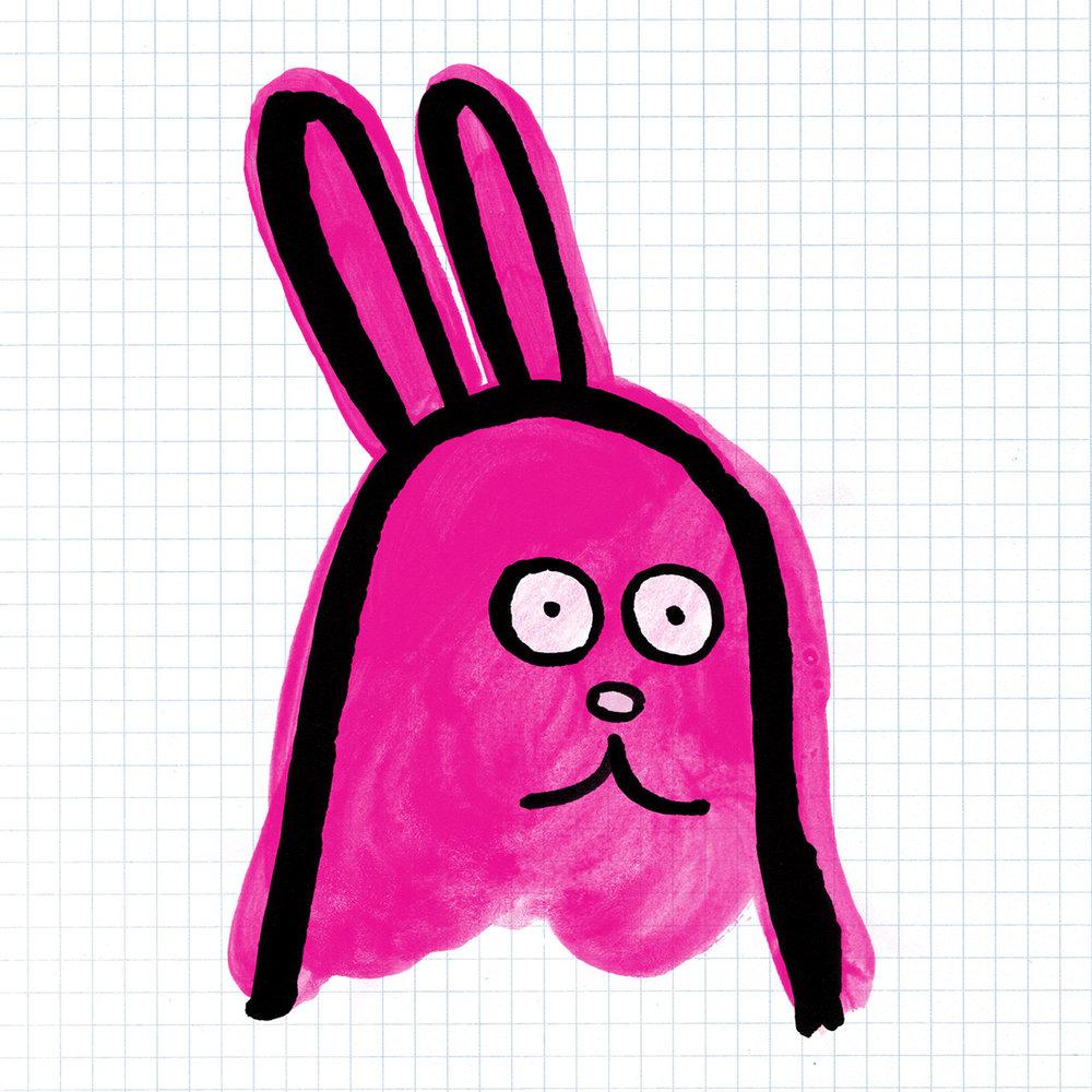 Insta_Rabbit.jpg