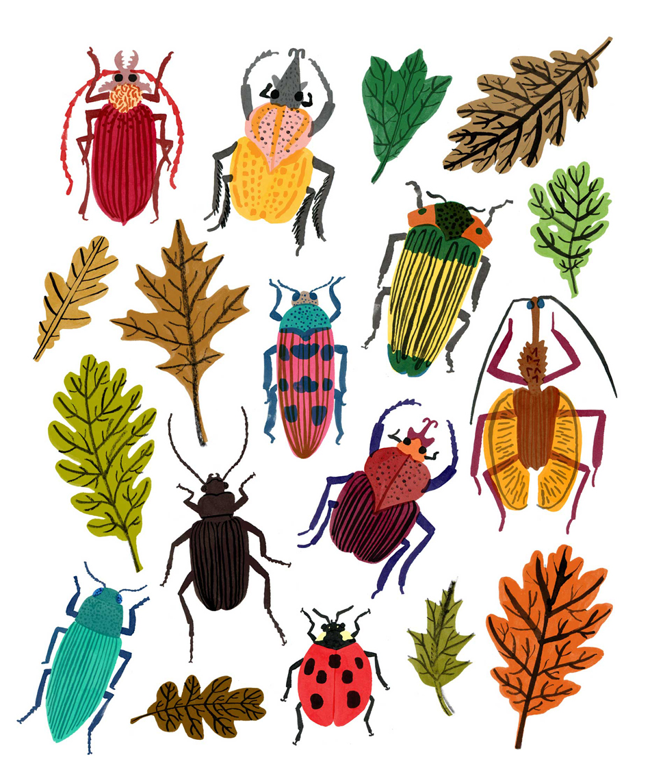 beetles_ml_1_leaves.jpg