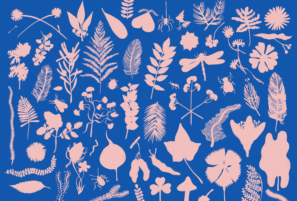 endpapers_1.blue.jpeg
