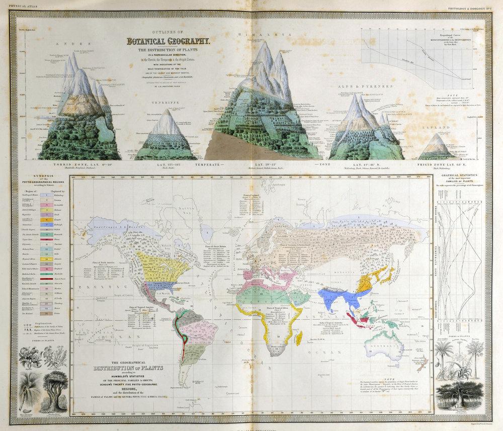 johnston-map-botany-thumbnail.jpg