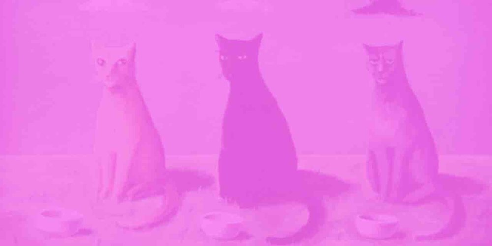 Tres gatos - Adelaida Zoraida