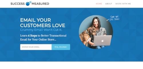 succesmeasured homepage.jpg