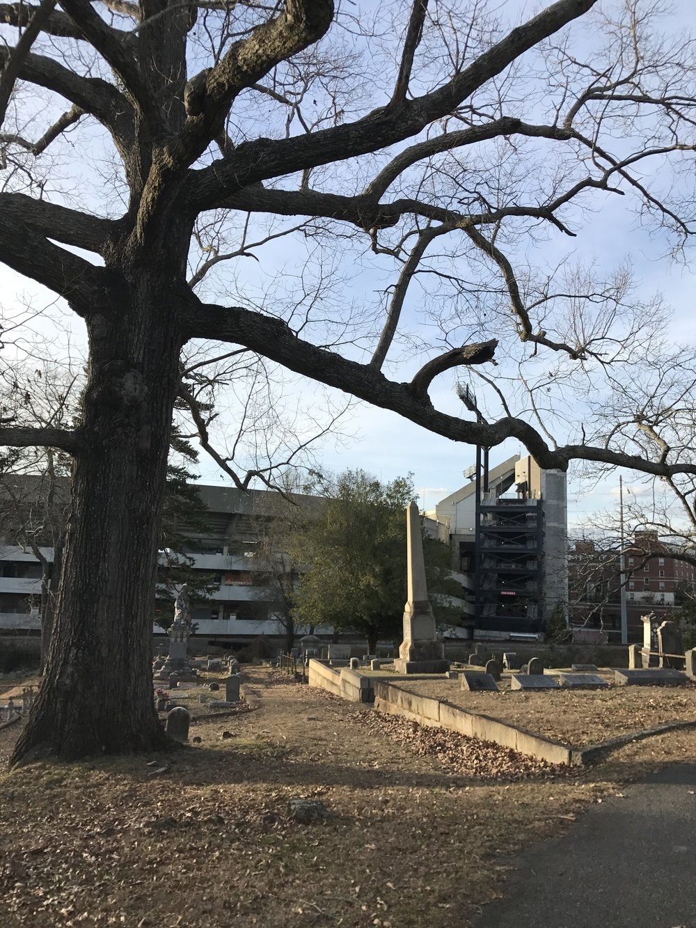 A view of campus from the Oconee Hill Cemetery