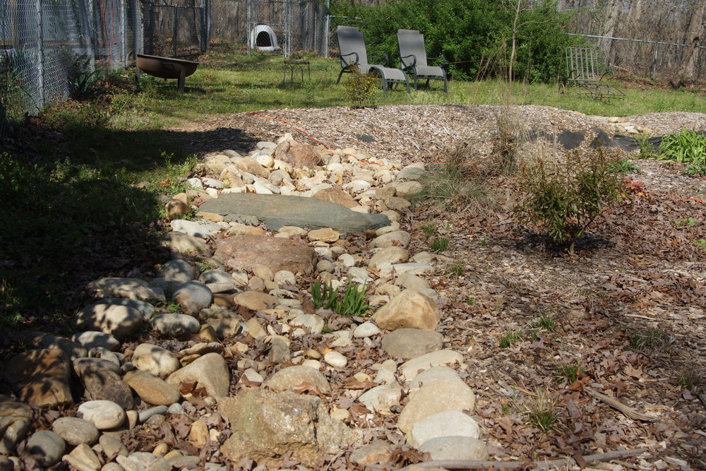 Dry creek bed that leads to rain garden.JPG