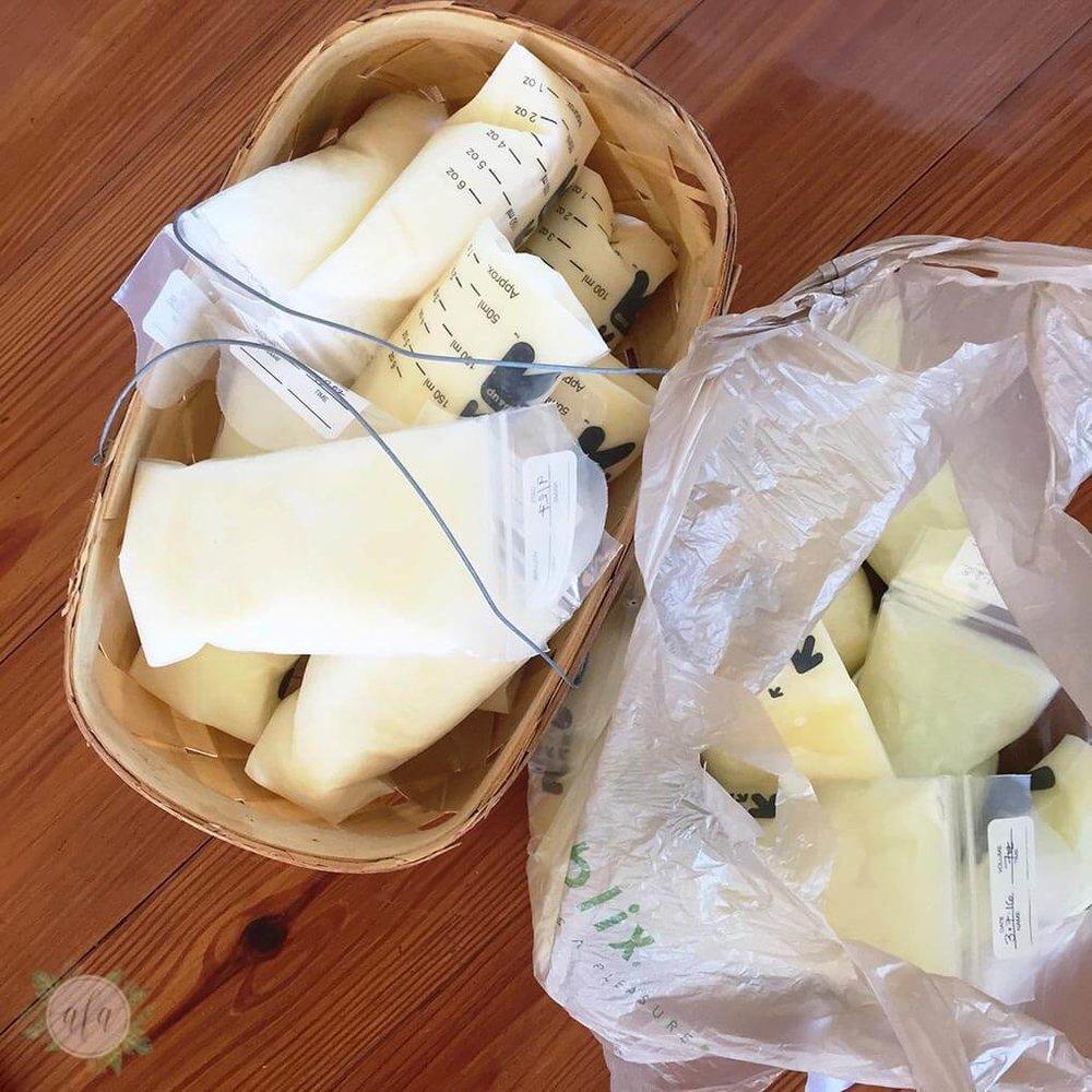 milk-basket-donation-collection.jpg