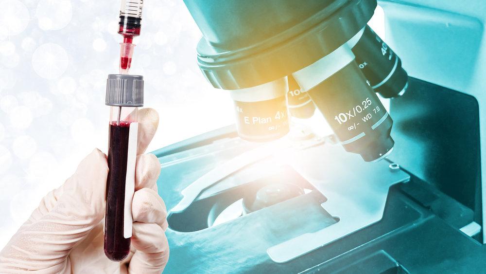 Port-Orchard-Animal-Clinic_Dr-Liz-Oien-DVM_Veterinarian_pet-care-lab-blood-test-diagnostics.jpg