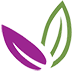 sagemont logo leaves 75px.png
