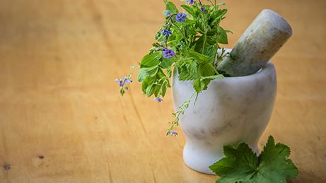 Herbs 2.jpeg