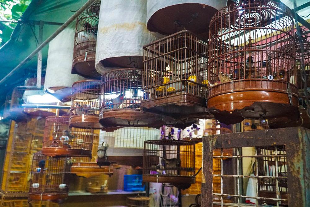 GOAL TRAVELER-HONG KONG- YUEN PO STREET.jpg