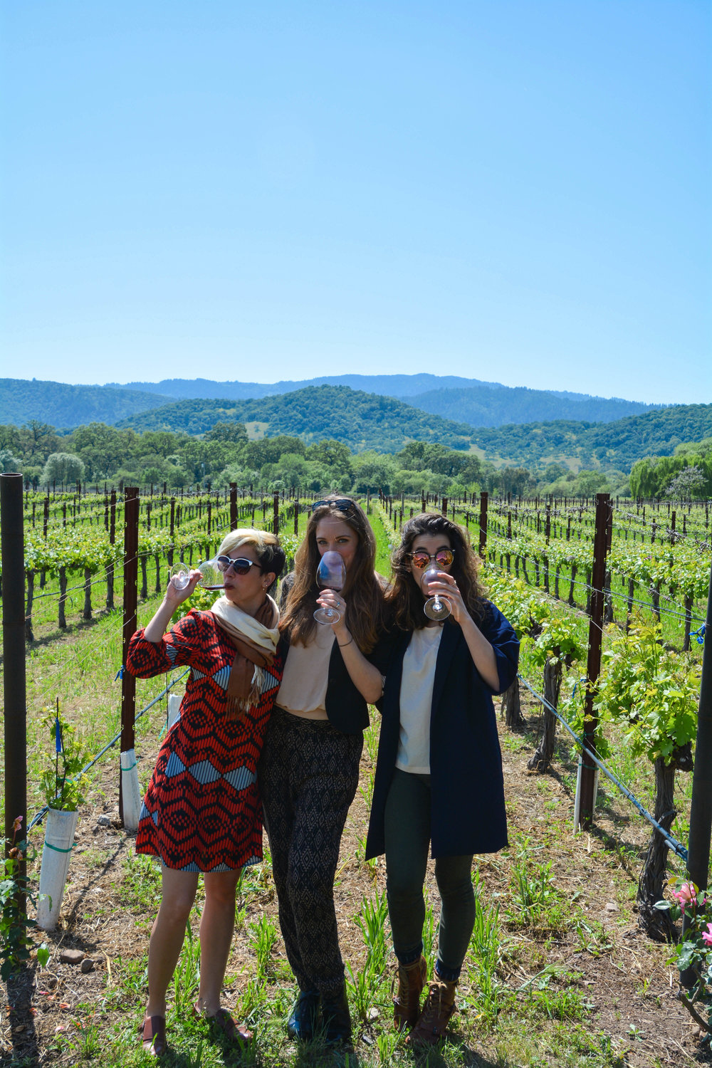 GOAL TRAVELER-NAPA VALLEY- CALIFORNIA- WINE