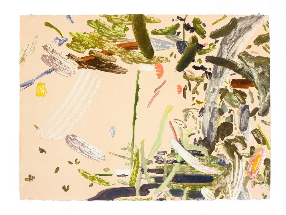 "peach monoprint , monoprint, 30"" x 20"", 2014"