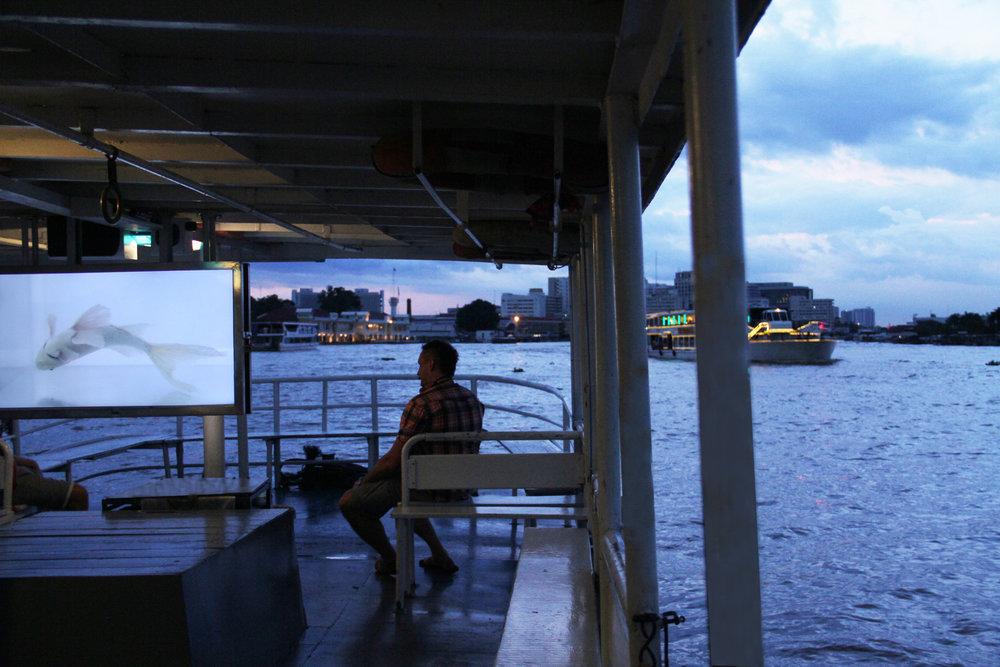 'White Anaesthesia'_Installation View_The Ferry Gallery_Bangkok, Thailand_2014.jpg
