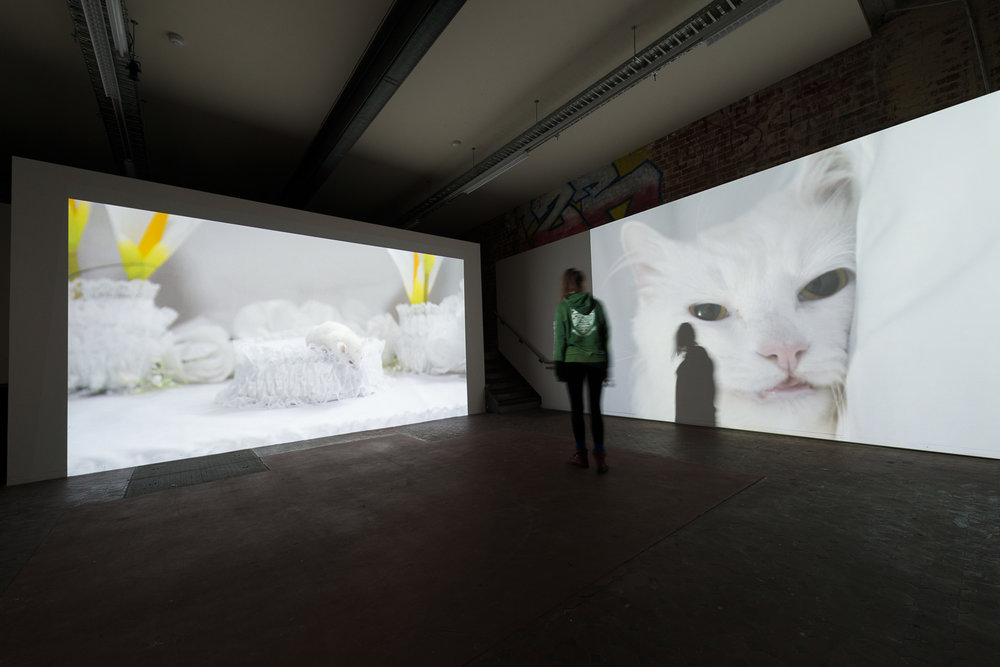 'White Anaesthesia'_installation view_The Substation, Melbourne_2013.jpg