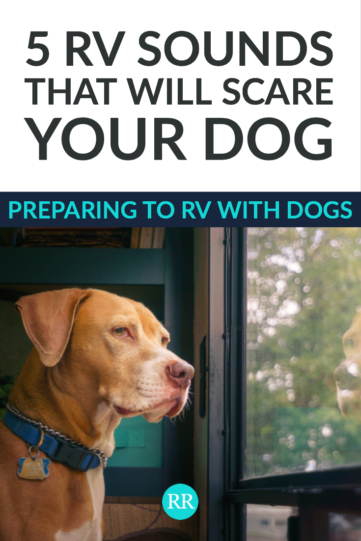 RVing with Dogs.jpg