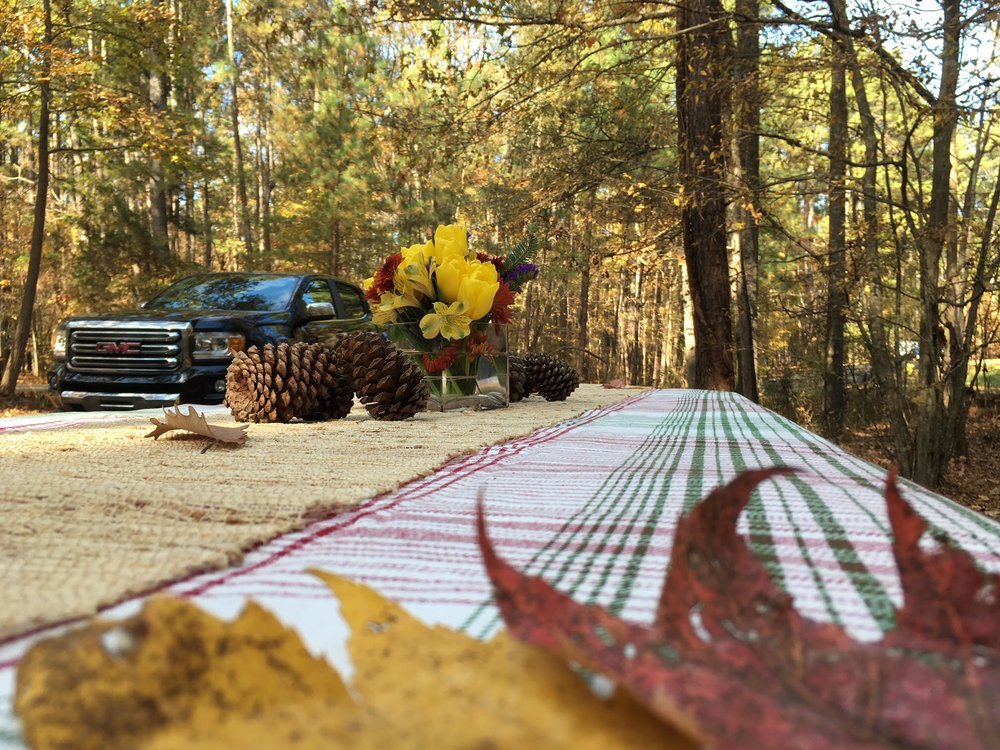 We had a wonderful, bug-free, first Thanksgiving out on the road. This was our table for our own little 2-person Thanksgiving in North Carolina.