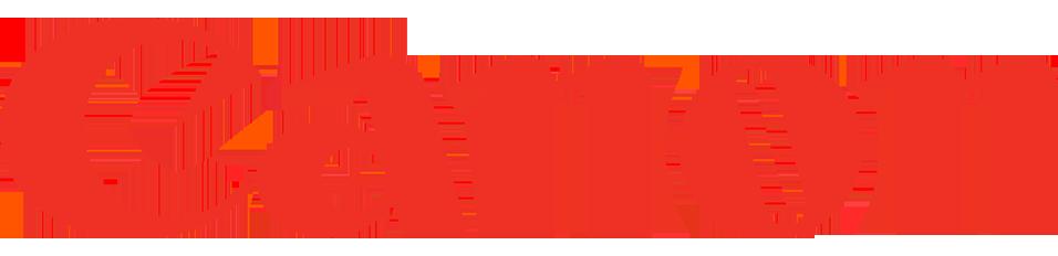Cannon Logo copy.png