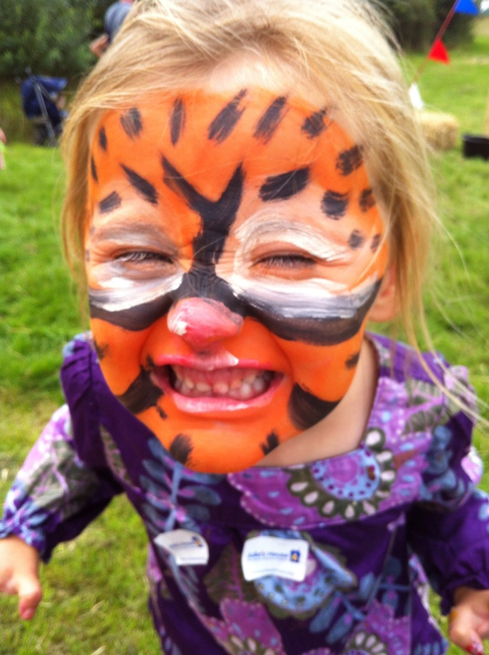 Partyfield Dorset childrens party face painting 4 .jpg