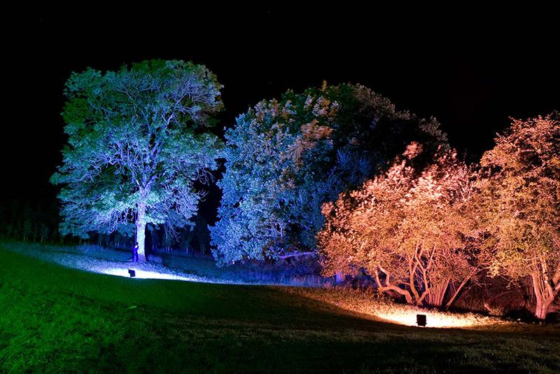 Partyfield Poole Dorset lights at night 3.jpg