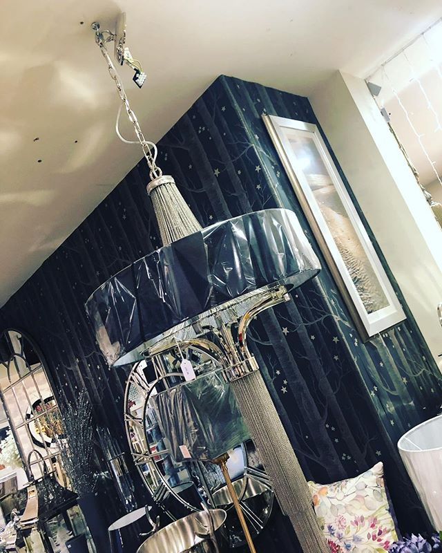 This is the most gorgeous light I have ever seen! Absolutely perfect for stairs, large dining room or hallway. Spectacular! Available in store.