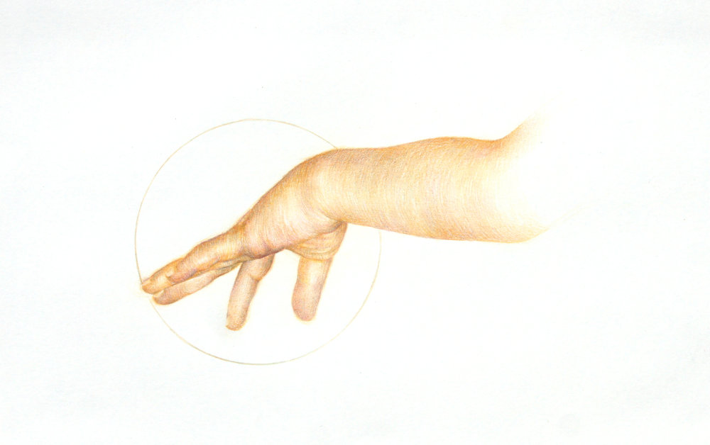 10_Circle of Life_29x21_Colored pencil on Paper.jpg