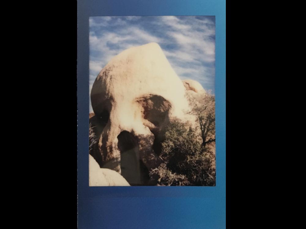 Goonies never say die  Joshua Tree, California, USA