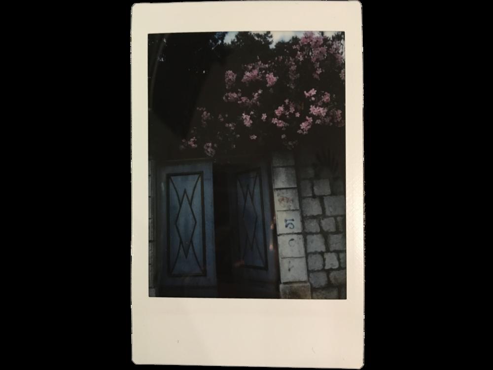 Florals & doorways  Split, Croatia
