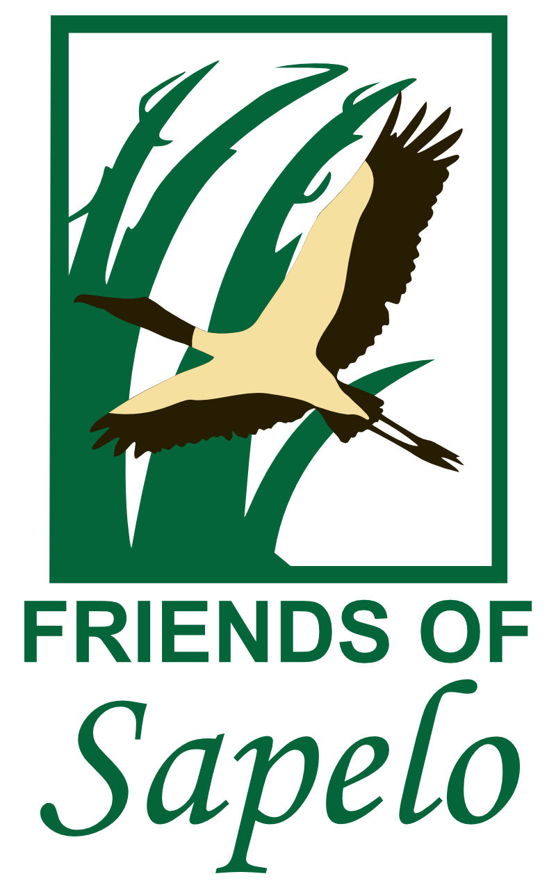 Friends of Sapelo