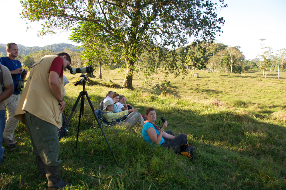 Birding on a Travel With Ann tour