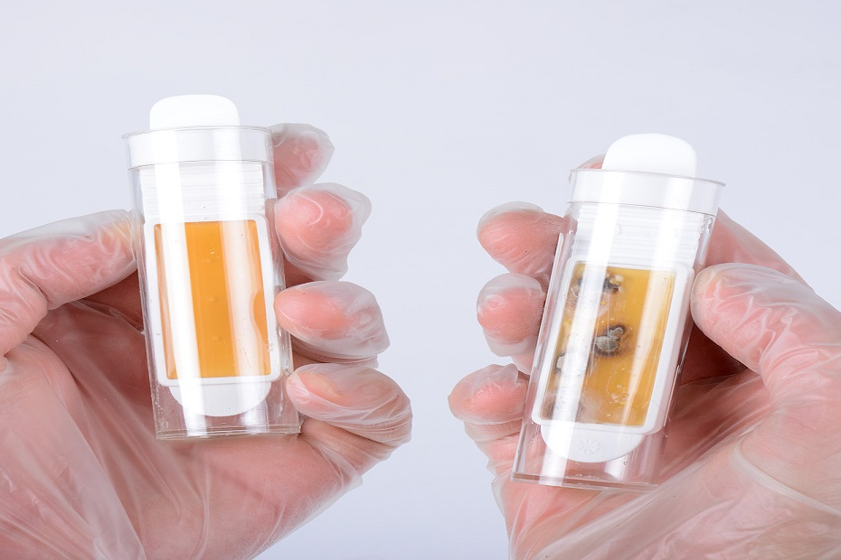 Hands and Bacteria Testers - 2 smaller.jpg