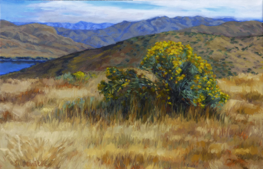 Lydle Gulch- Rabbitbrush
