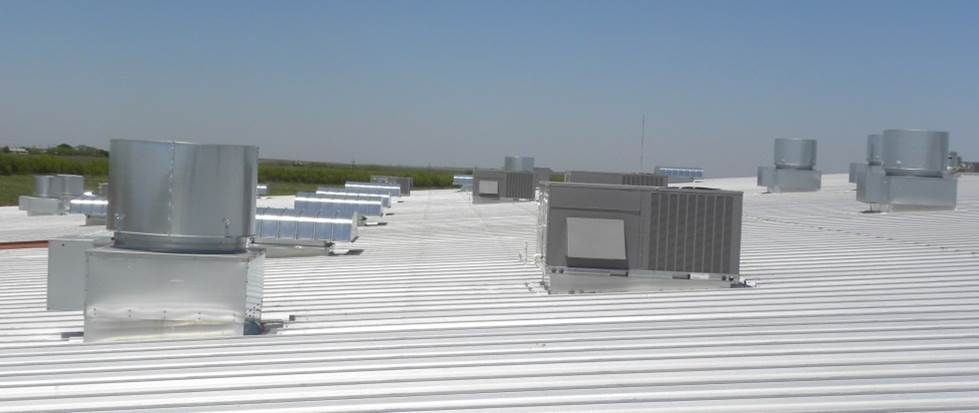 SC2 Roof of Dreams.jpg