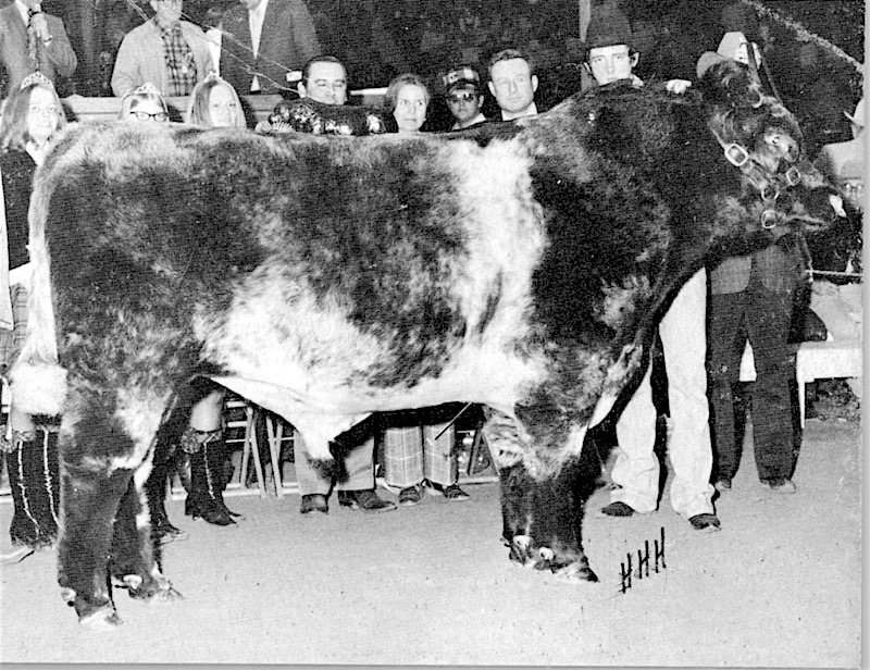 Grand Champion Bull 1974.jpeg