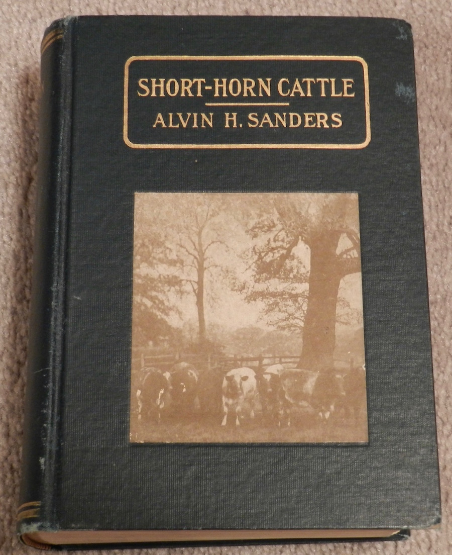 shrt-horn cattle.jpg