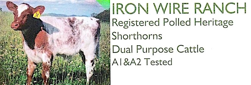 Iron Wire Logo.jpg