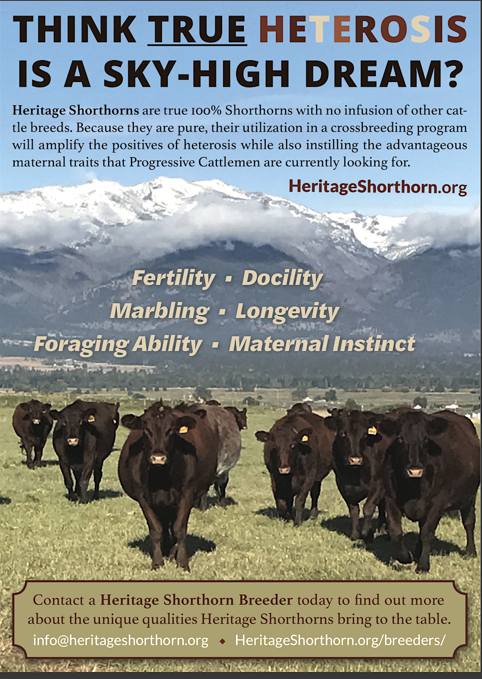 Progressive Cattleman Ad 4:1:19 copy.png