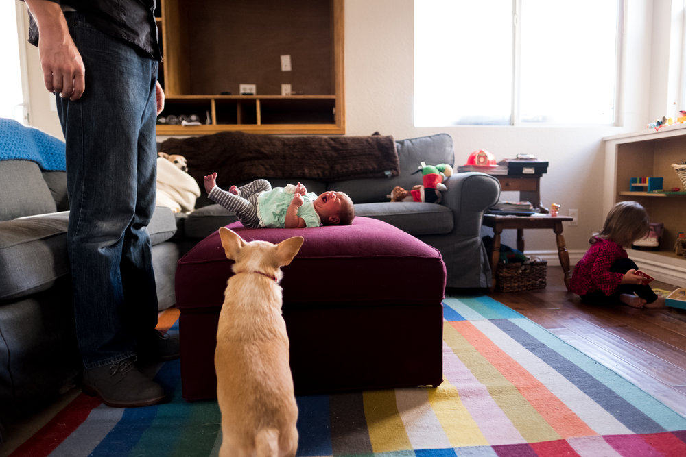 A dad and dog guard watch over their newborn baby at an in-home newborn session in Rancho Cucamonga by Erica Faith Photography.